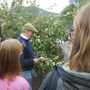 26 Aug – George Anderson – Pruning Workshop