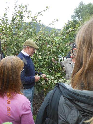26 Aug - George Anderson - Pruning Workshop