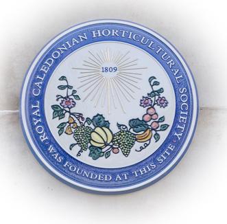 dome-plaque