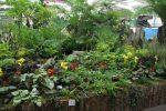 gs-rococo-gardens.-floral-hall