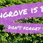 Beechgrove is back!!