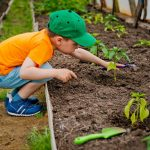 Children's Gardening Projects