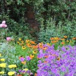 Open Garden – Sunday 18th August