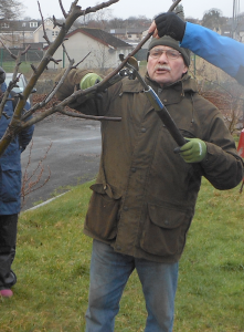 winter-fruit-pruning-2-copy