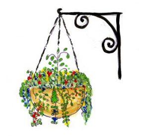 hanging_basket
